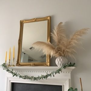 Cream Dried Pampas Grass Bohemian Floral 3 Stems real